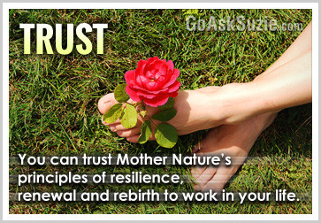 Trust in natures principles of renewal resilence