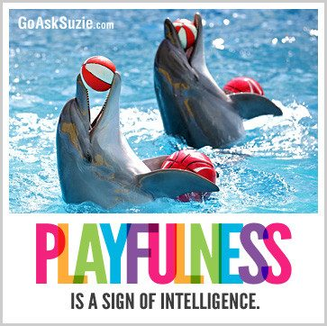 Playfulness Is A Sign Of Intelligence